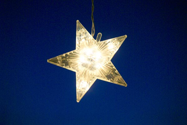 Picture of Christmas Star - Free Pictures - FreeFoto.com