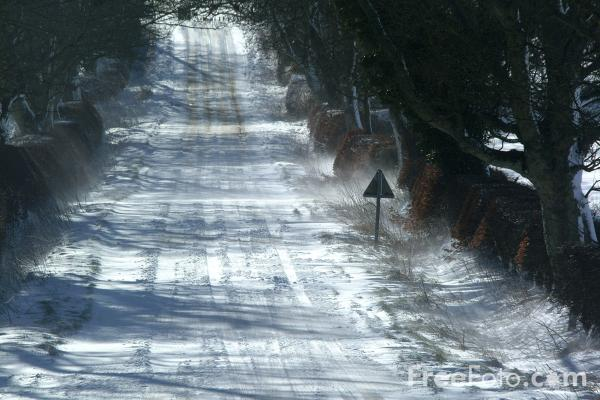 Picture of Snow Covered Road, Northumberland - Free Pictures - FreeFoto.com