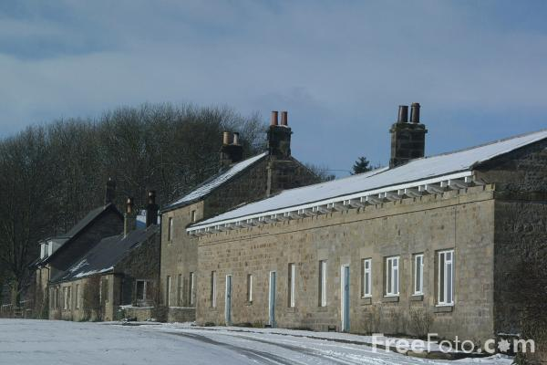Picture of Winter Scene, Capheaton, Northumberland - Free Pictures - FreeFoto.com