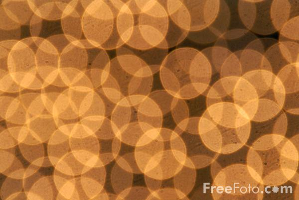 Picture of Christmas Tree Lights - Free Pictures - FreeFoto.com