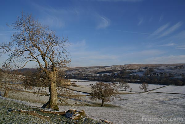 Picture of Winter scene in Allendale - Free Pictures - FreeFoto.com