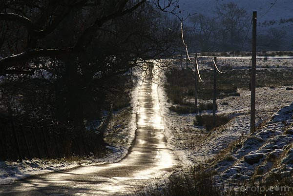 Picture of Country road in winter - Free Pictures - FreeFoto.com
