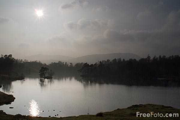 Picture of Tarn Hows, Coniston, Cumbria - Free Pictures - FreeFoto.com