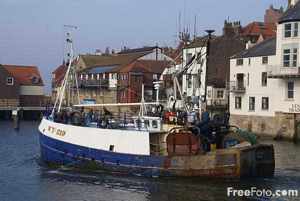 Picture of Fishing Boat, Whitby Harbour, North Yorkshire, - Free Pictures - FreeFoto.com
