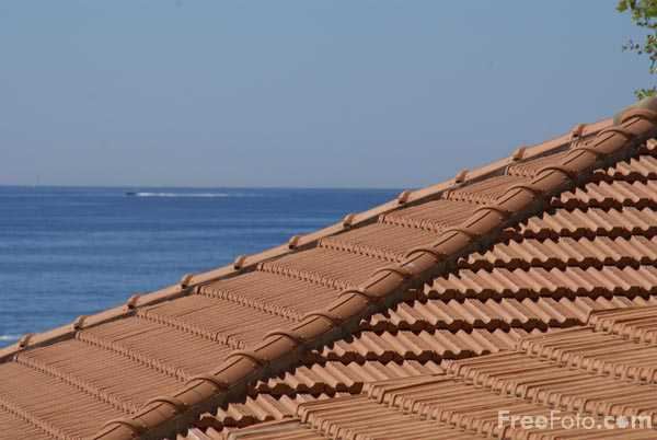 Picture of French Tiled Roof - Free Pictures - FreeFoto.com