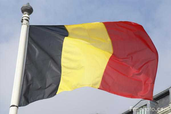 Picture of Belgian flag - Free Pictures - FreeFoto.com