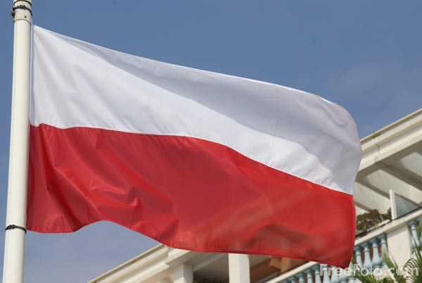 Picture of Flag of Poland - Free Pictures - FreeFoto.com