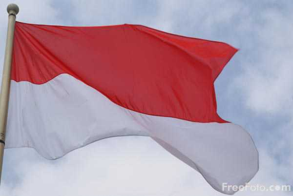 Picture of Flag of Monaco - Free Pictures - FreeFoto.com