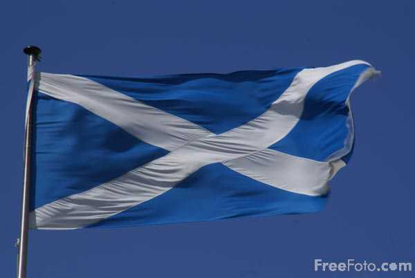 Picture of Flag of Scotland - Free Pictures - FreeFoto.com