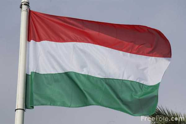 Picture of Flag of Hungary - Free Pictures - FreeFoto.com