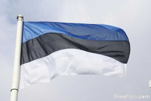 Picture of Flag of Estonia - Free Pictures - FreeFoto.com
