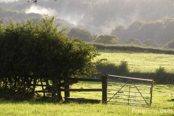 Picture of Farm gate into a field - Free Pictures - FreeFoto.com