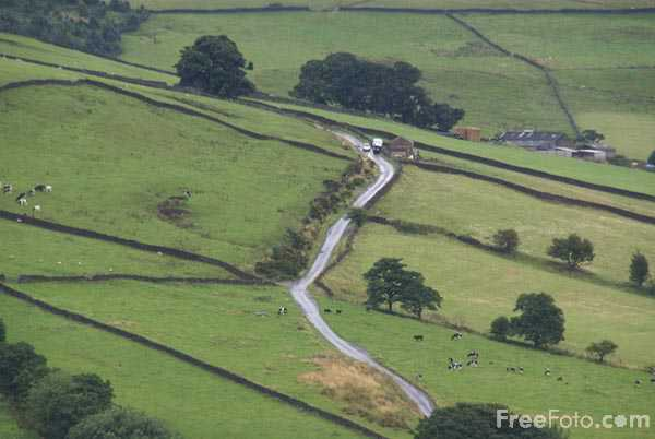 Picture of Country Road, Nidderdale - Free Pictures - FreeFoto.com