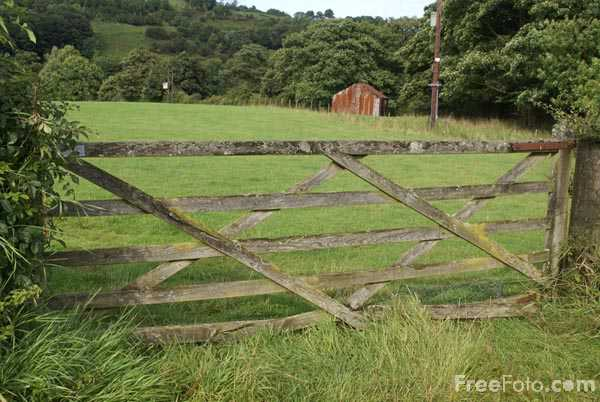 Picture of Five Bar Wooden Farm Gate - Free Pictures - FreeFoto.com