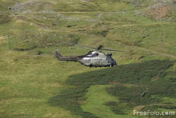 Picture of RAF Puma HC1 Helicopter - Free Pictures - FreeFoto.com