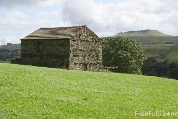 Picture of Field Barn, Wensleydale - Free Pictures - FreeFoto.com