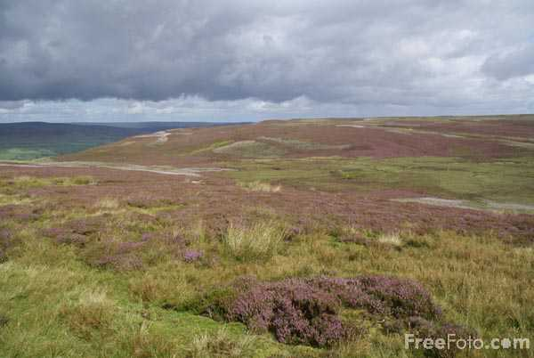 Picture of Askrigg Common - Free Pictures - FreeFoto.com