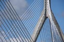 Image Ref: 909-20-815 - Zakim Bridge, Viewed 2320 times