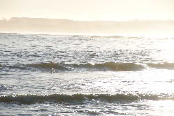 Picture of Beadnell Bay - Free Pictures - FreeFoto.com