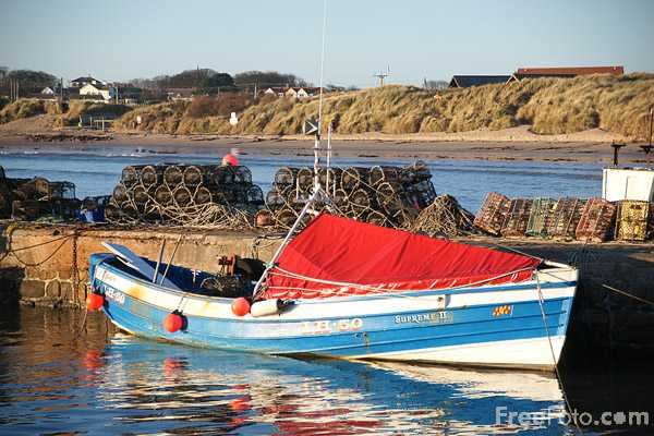Picture of Beadnell Harbour - Free Pictures - FreeFoto.com