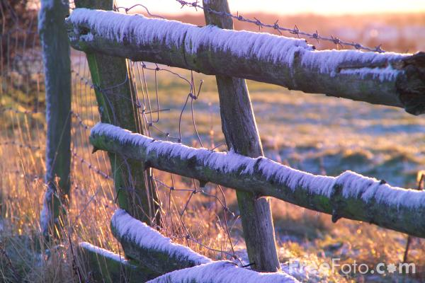 Picture of Rustic Fence - Free Pictures - FreeFoto.com