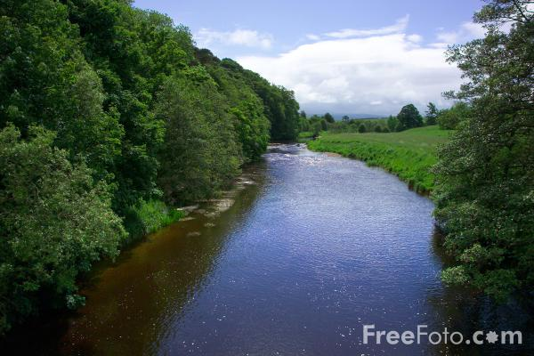 Picture of River Eden - Free Pictures - FreeFoto.com