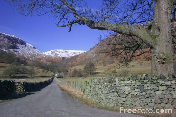 Picture of Country Lane, Ullswater - Free Pictures - FreeFoto.com