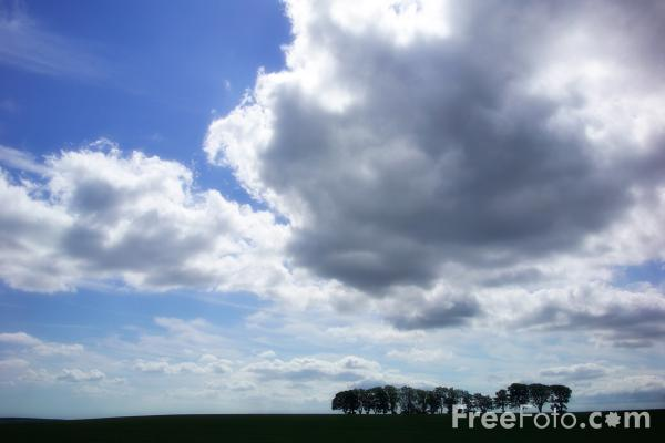 Picture of JuBlue sky and white clouds - Free Pictures - FreeFoto.com