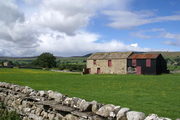 Picture of Wensleydale - Free Pictures - FreeFoto.com