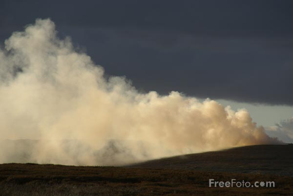 Picture of Heather burning on moorland - Free Pictures - FreeFoto.com