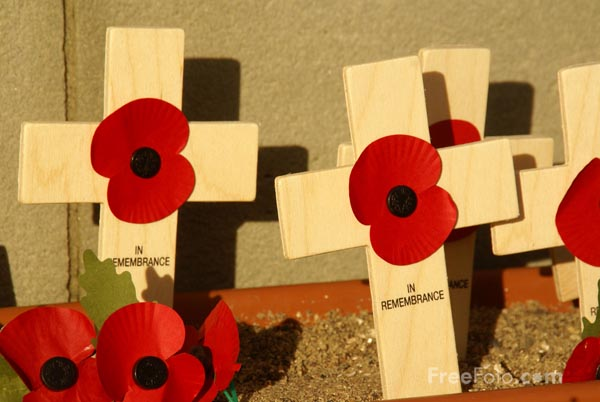 Picture of Remembrance Sunday - Free Pictures - FreeFoto.com