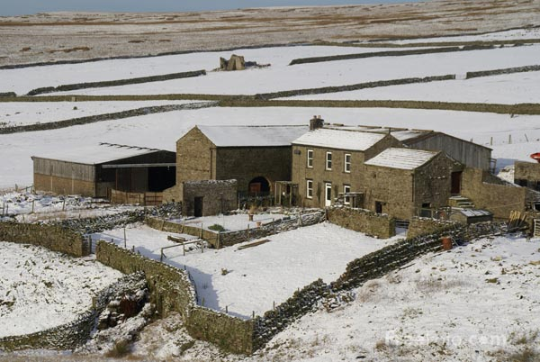 Picture of Winter Scene, Yorkshire Dales - Free Pictures - FreeFoto.com