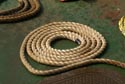 Coil of rope has been viewed 51092 times