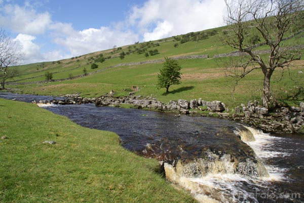 Picture of River Wharfe near Yocklethwaite, Langstrothdale - Free Pictures - FreeFoto.com