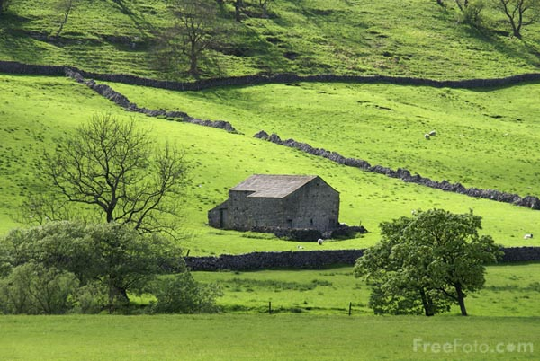Picture of Barn, Upper Wharfedale - Free Pictures - FreeFoto.com