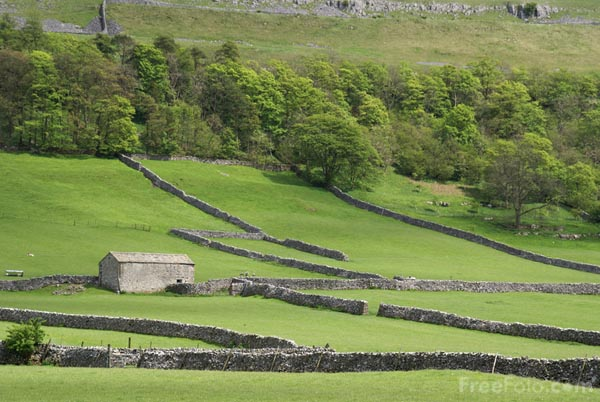 Picture of Fields near Kettlewell - Free Pictures - FreeFoto.com