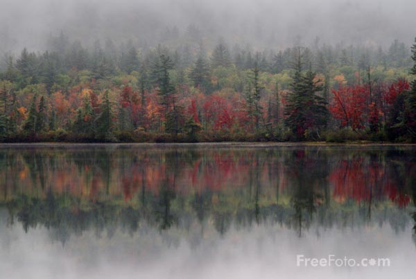 Picture of Fall Color, Chocorua Lake, New Hampshire, USA - Free Pictures - FreeFoto.com