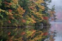 Fall Color, Chocorua Lake, New Hampshire, USA has been viewed 9325 times
