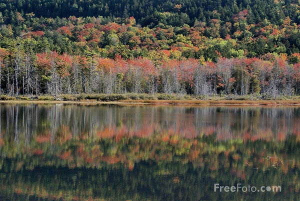 Picture of Upper Hadlock Pond, Arcadia National Park, Maine - Free Pictures - FreeFoto.com