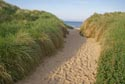 Footpath to the beach has been viewed 7113 times