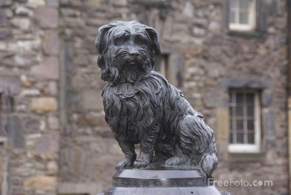 Picture of Greyfriars Bobby - Free Pictures - FreeFoto.com