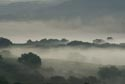 Image Ref: 9908-09-5202 - Misty Morning, Viewed 6552 times