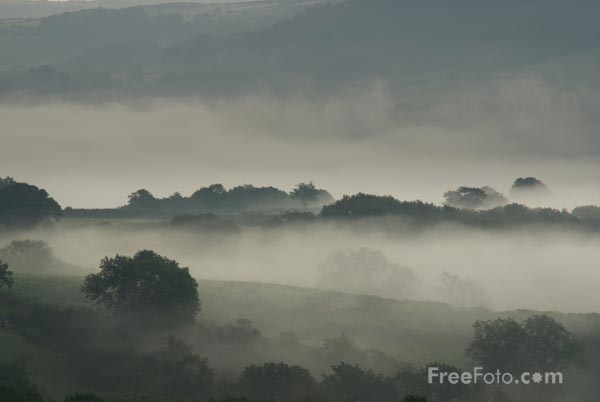 Picture of Misty Morning - Free Pictures - FreeFoto.com