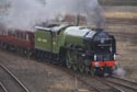 Brand new Peppercorn class A1 60163 Tornado has been viewed 10542 times