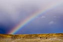Rainbow, Arkengarthdale has been viewed 12879 times