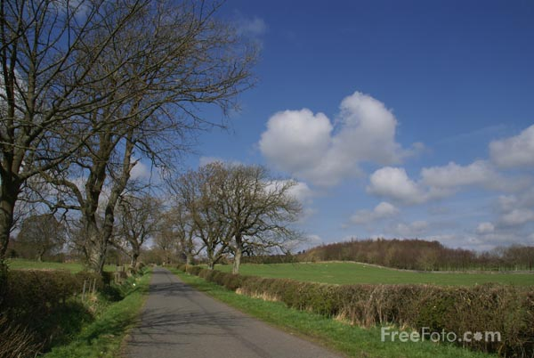 Picture of Country Road Northumberland - Free Pictures - FreeFoto.com