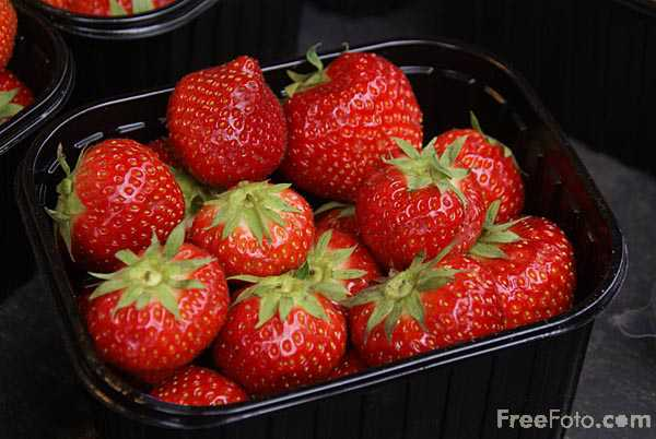 Picture of strawberries - Free Pictures - FreeFoto.com
