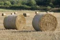 Image Ref: 9909-09-3856 - Bales in a field at Harvest Time, Viewed 4328 times