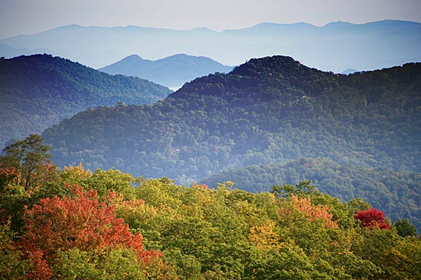 Picture of Blue Ridge Parkway - Free Pictures - FreeFoto.com