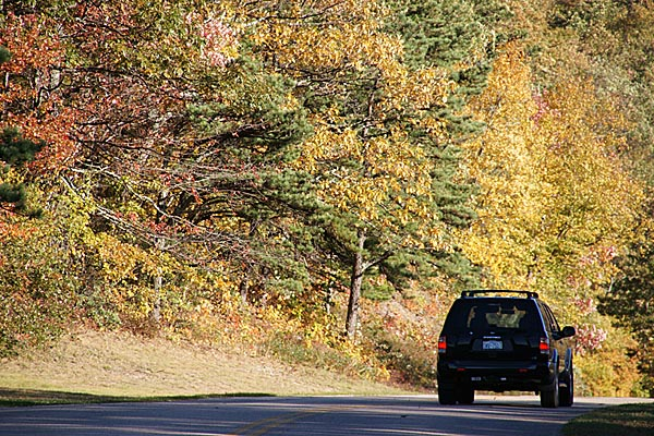 Picture of Fall color along the Blue Ridge Parkway - Free Pictures - FreeFoto.com